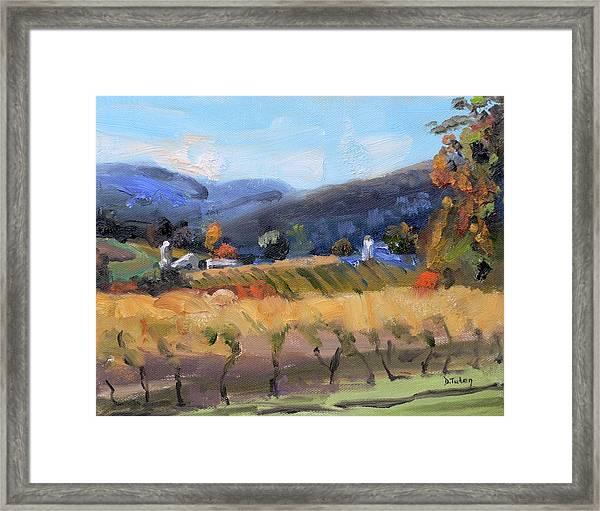 Grace Estate Winery Charlottesville Va Framed Print