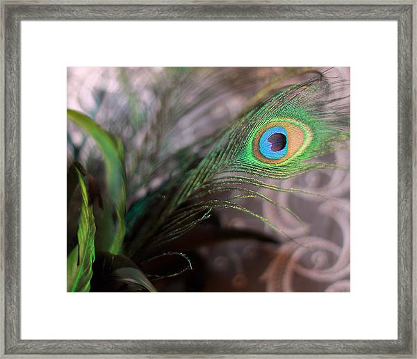 Graceful Peacock Feather Framed Print