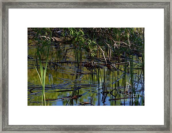 Grand Beach Marsh Framed Print