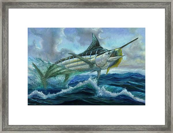Grand Blue Marlin Jumping Eating Mahi Mahi Framed Print