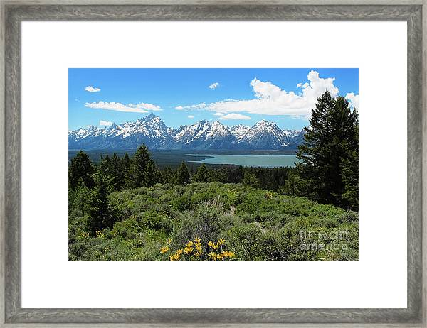 Grand Tetons Framed Print