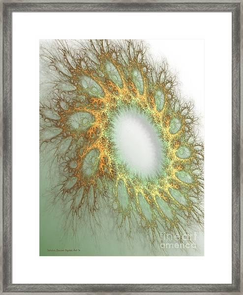 Framed Print featuring the digital art Grandmas Doily by Sandra Bauser Digital Art