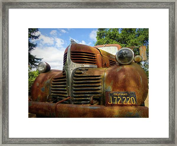 Framed Print featuring the photograph Grandpa by Skip Hunt