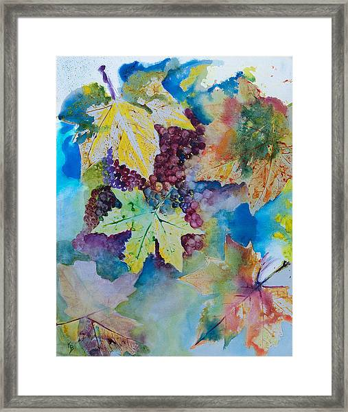 Grapes And Leaves Framed Print
