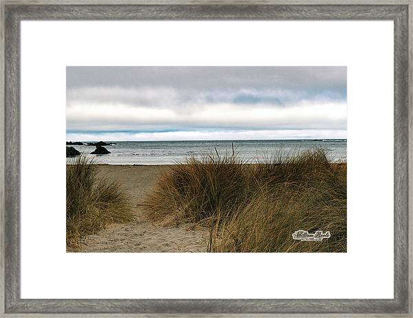 Framed Print featuring the photograph Grassy Beach by William Havle