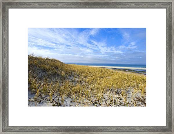 Grassy Sand Dunes Overlooking The Beach Framed Print
