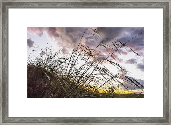 Grassy Knoll Framed Print