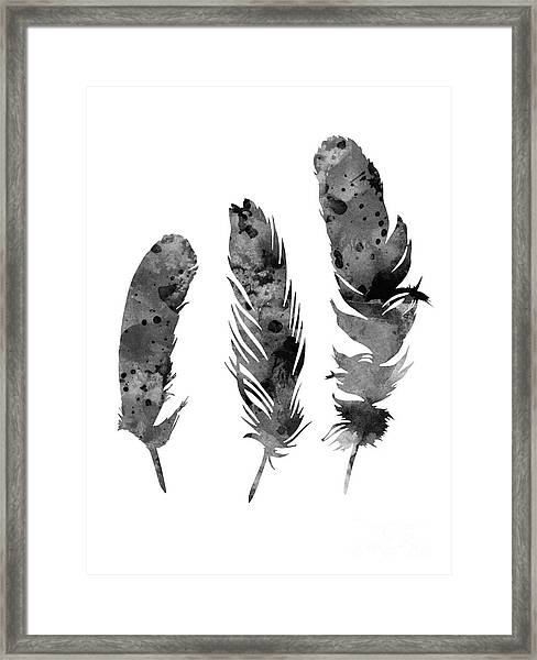 Gray Feathers Watercolor Art Print Painting Framed Print
