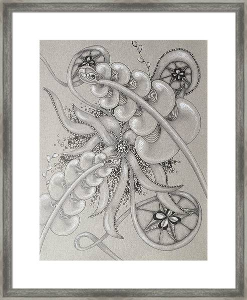 Gray Garden Explosion Framed Print