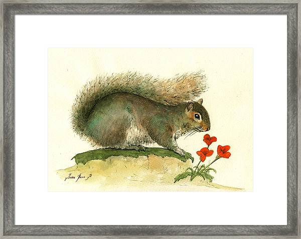 Gray Squirrel Flowers Framed Print