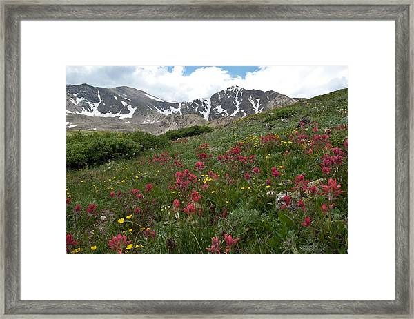 Gray's And Torreys Framed Print