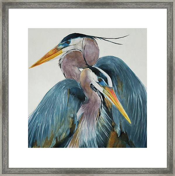 Great Blue Heron Couple Framed Print