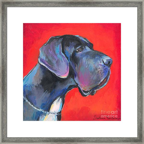 Great Dane Painting Framed Print
