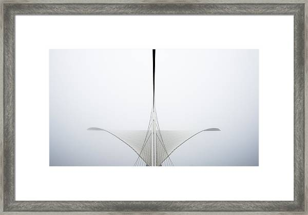 Great White Framed Print