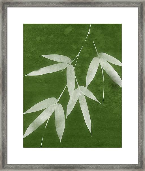 Green Bamboo 1-art By Linda Woods Framed Print