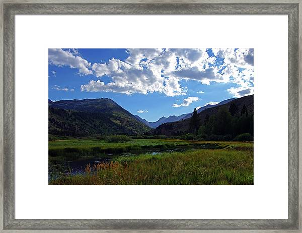 Green Creek Meadow 2 Framed Print