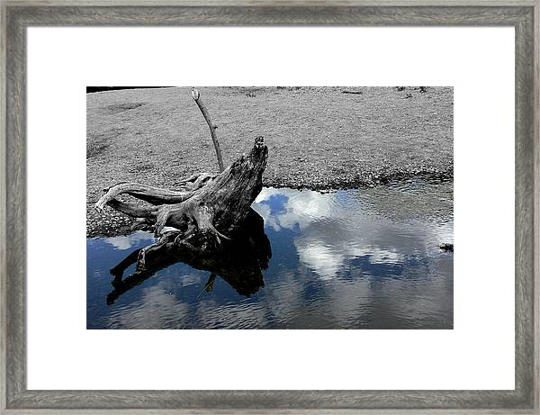 Green Creek Selective Color Framed Print