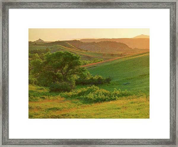 Green Dakota Dream Framed Print