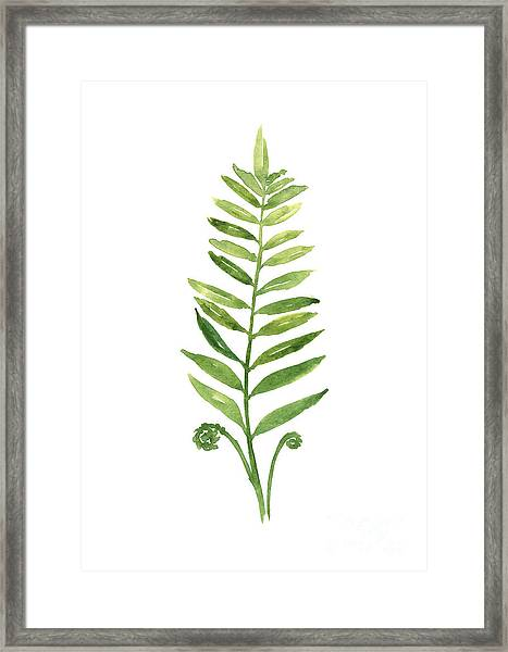 Green Fern Watercolor Art Print Painting Framed Print