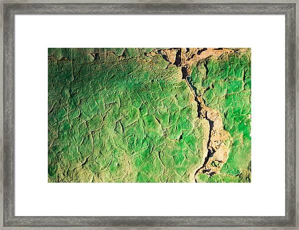 Green Flaking Brickwork Framed Print