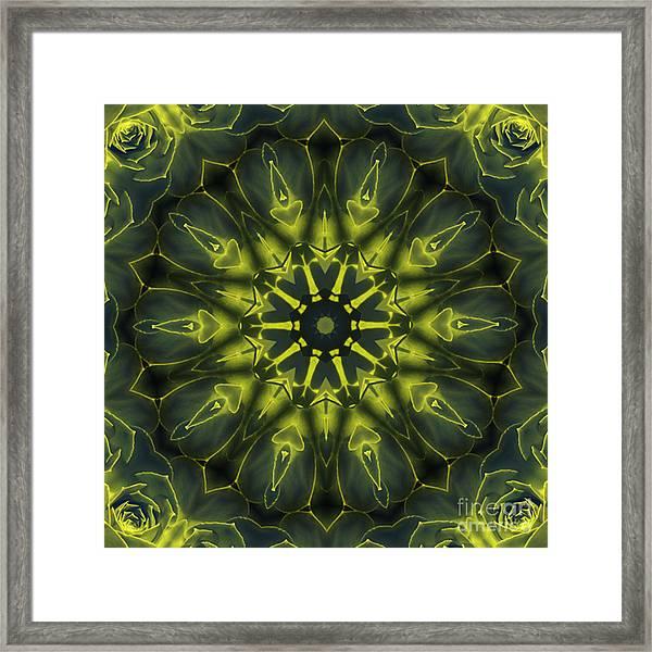 Succulent Mandala Framed Print