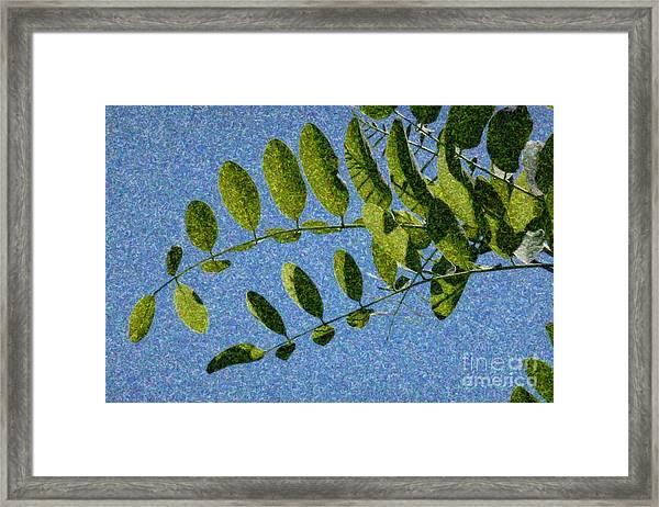 Green Leaves 2 Framed Print