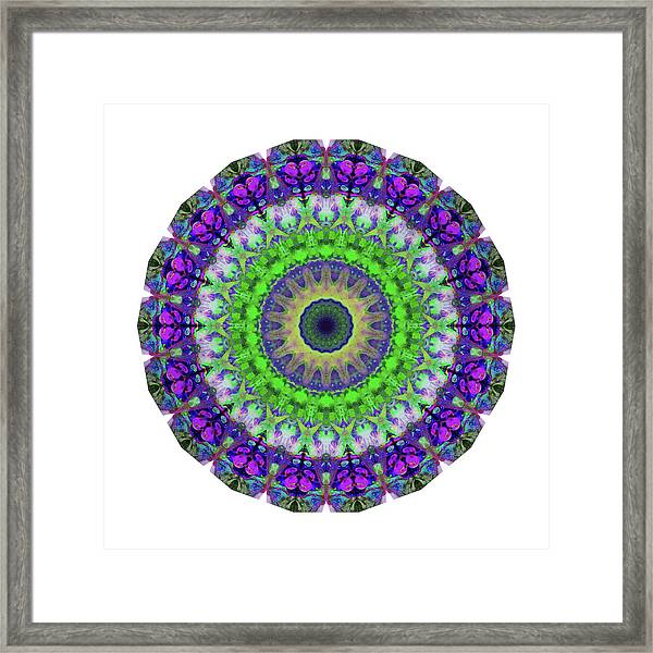 Green Light Mandala Art By Sharon Cummings Framed Print