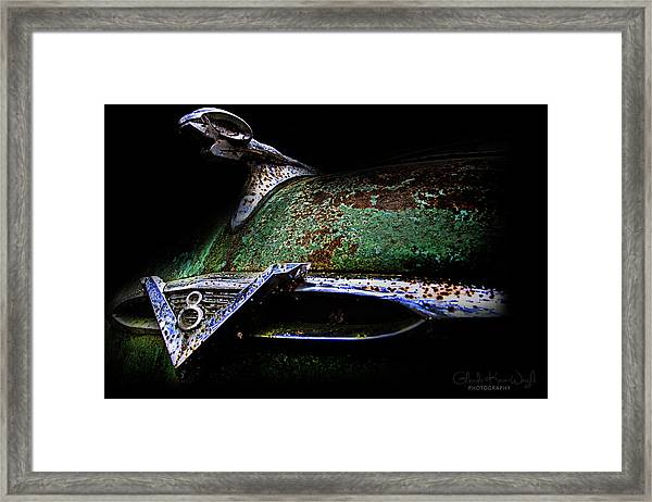 Framed Print featuring the photograph Green Ram Emblem by Glenda Wright