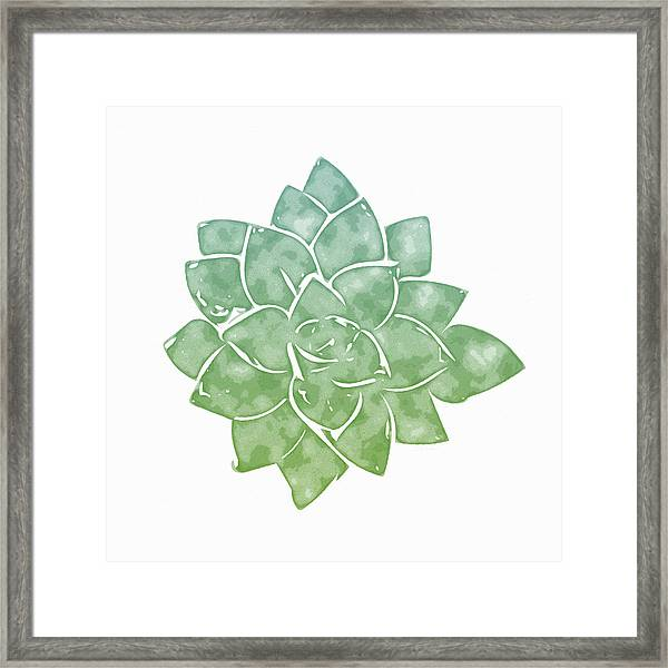 Green Succulent 1- Art By Linda Woods Framed Print