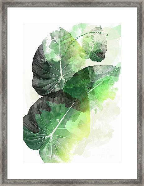 Green Tropical Framed Print