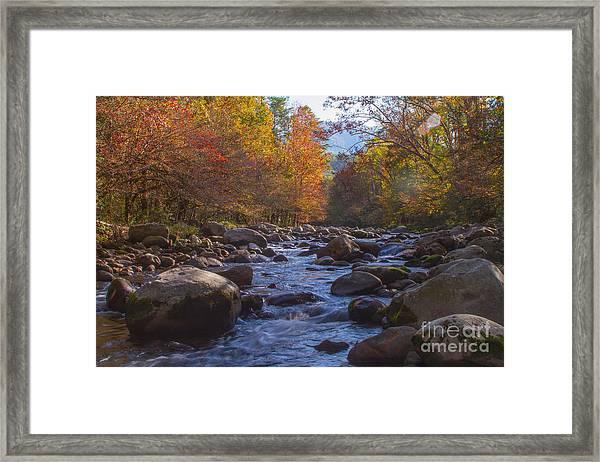 Greenbriar Creek Framed Print