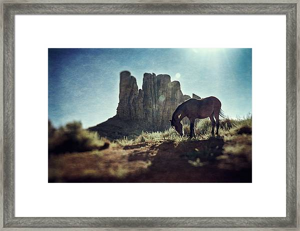 Greetings From The Wild West Framed Print