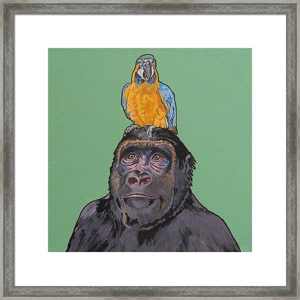 Gregory The Gorilla Framed Print