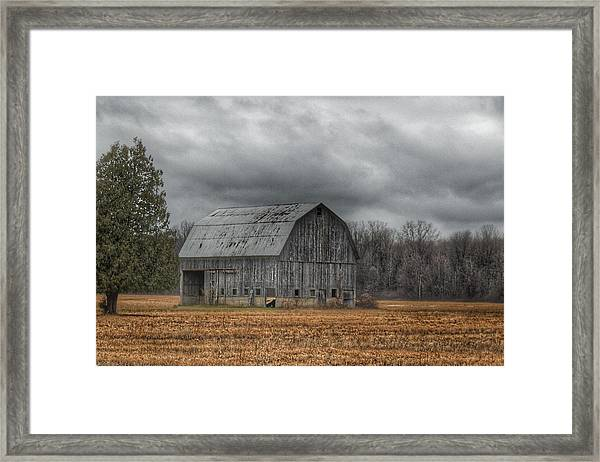 0024 - Grey Barn And Tree Framed Print