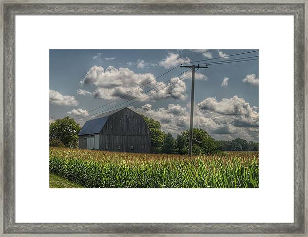 0013 - Grey Barn In A Cornfield Framed Print