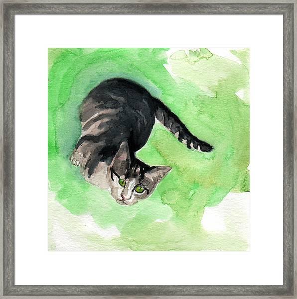 Mr Grey Framed Print