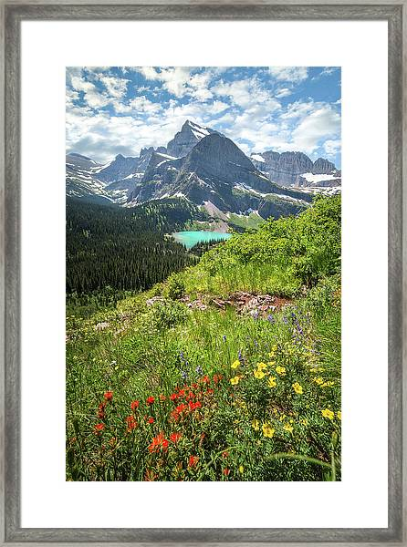 Grinnell Flowers // Grinnell Hiking Trail, Glacier National Park  Framed Print