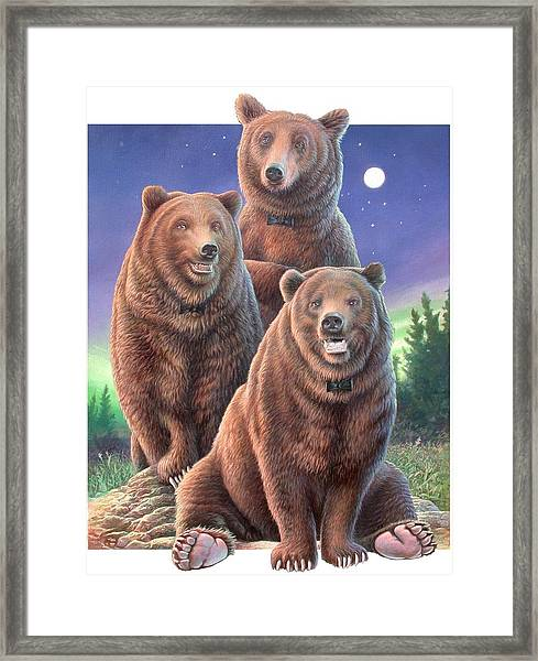 Grizzly Bears In Starry Night Framed Print