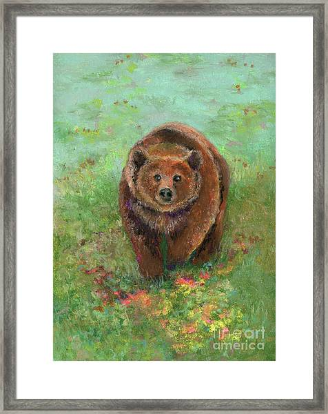 Grizzly In The Meadow Framed Print