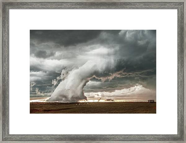 Groom Storm Framed Print