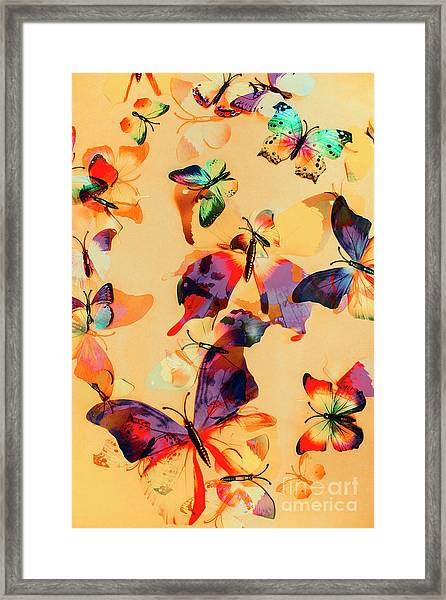 Group Of Butterflies With Colorful Wings Framed Print
