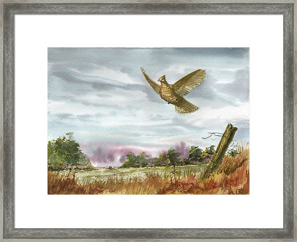 Grouse Post Framed Print