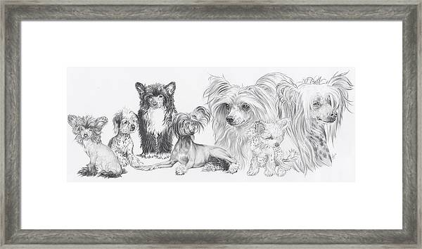 The Chinese Crested And Powderpuff Framed Print