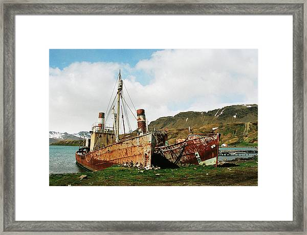 Grytviken Ghosts Framed Print
