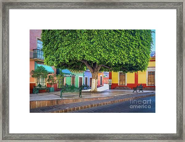 Guanajuato Small Park Framed Print