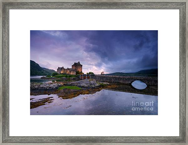 Guardian Of The Lake Framed Print