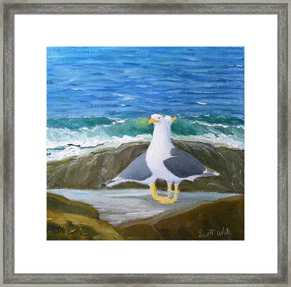 Guarding The Land And Sea Framed Print
