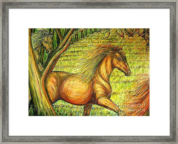 Guidance-out Of The Woods Framed Print