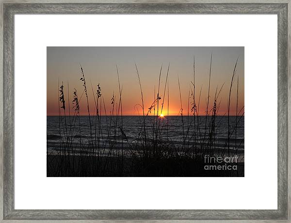 Gulf Sunset In Florida Framed Print