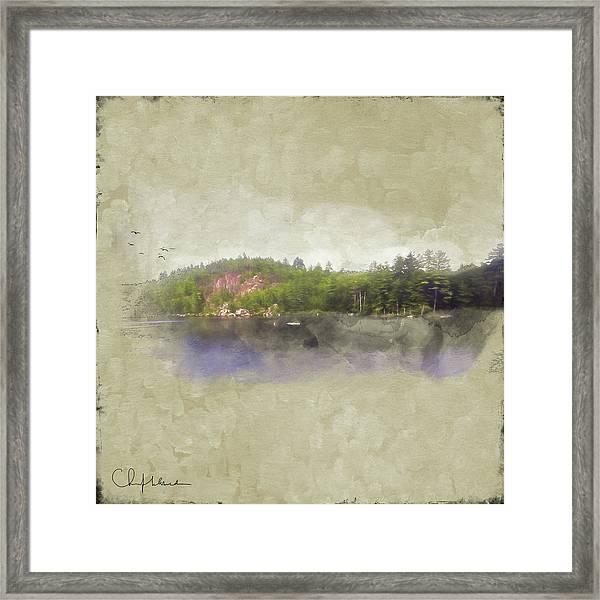 Gull Pond Framed Print